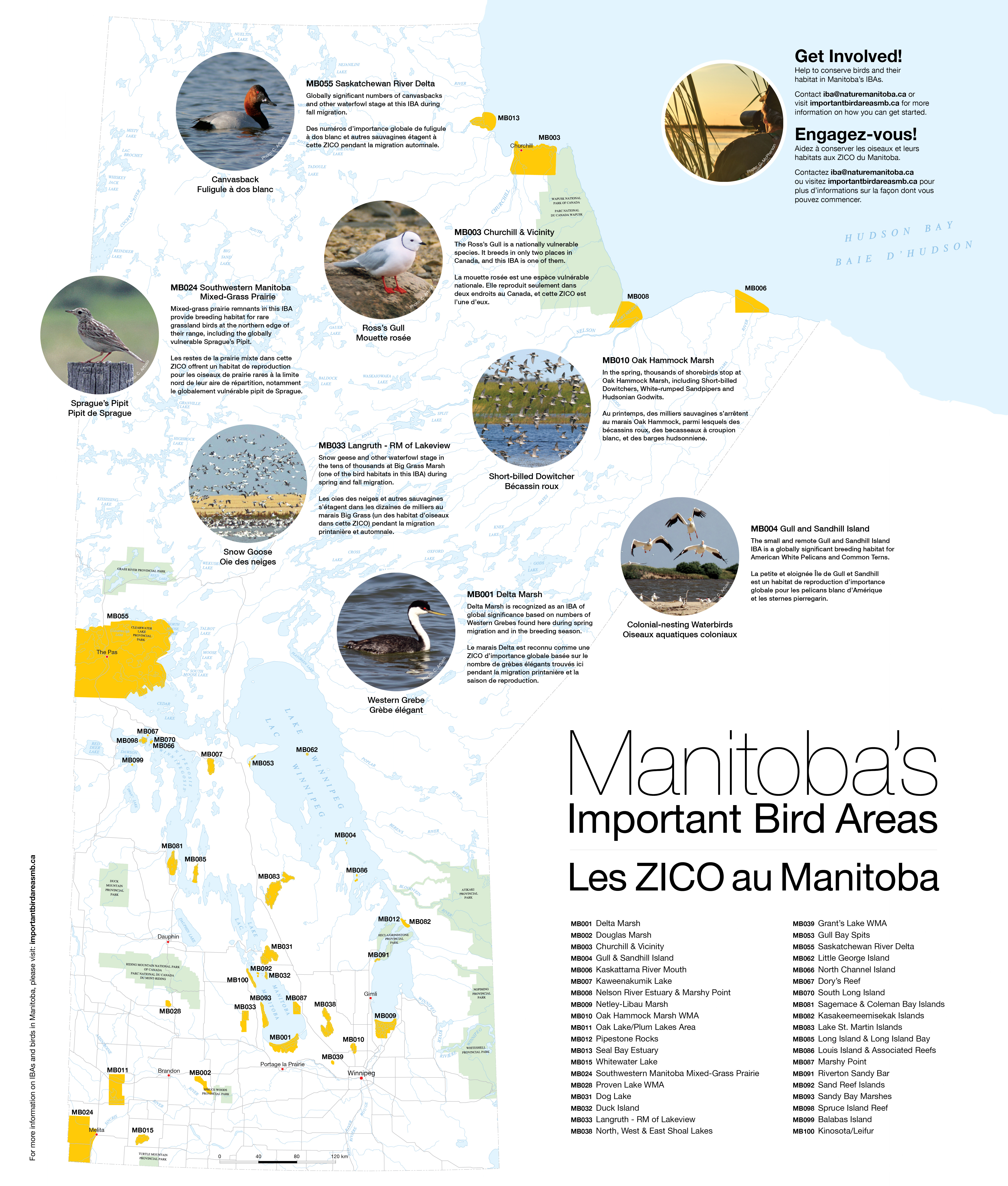 Maps and Monitoring Forms | Manitoba Important Bird Areas