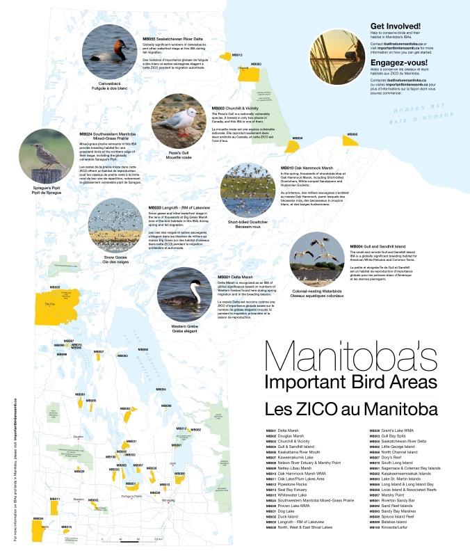 IBA Manitoba Map