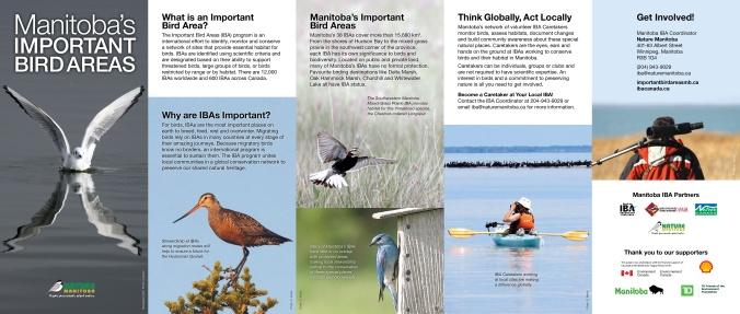 IBA Manitoba Brochure English