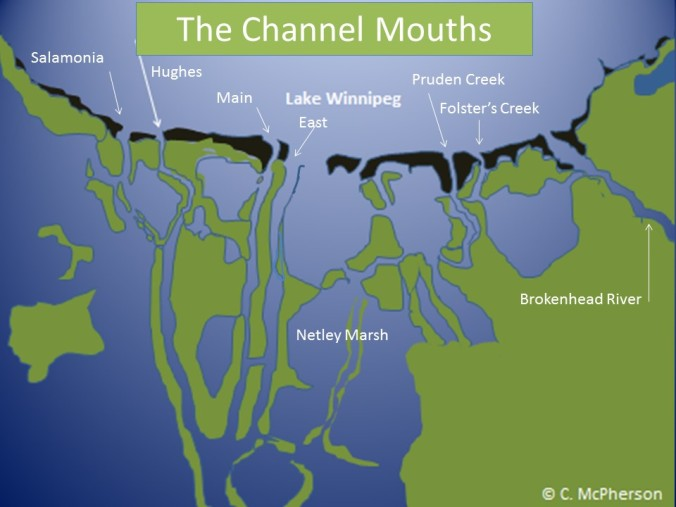 Channel Mouths