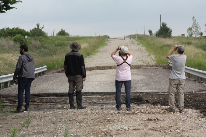 These birders will go anywhere to get that Rough-winged Swallow. Photo by Tim Poole