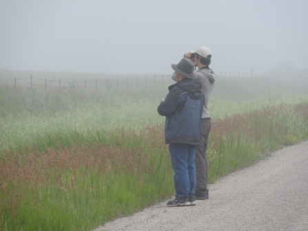 Luc and Tim trying to find birds out there. Somewhere. Photo copyright Donna Martin
