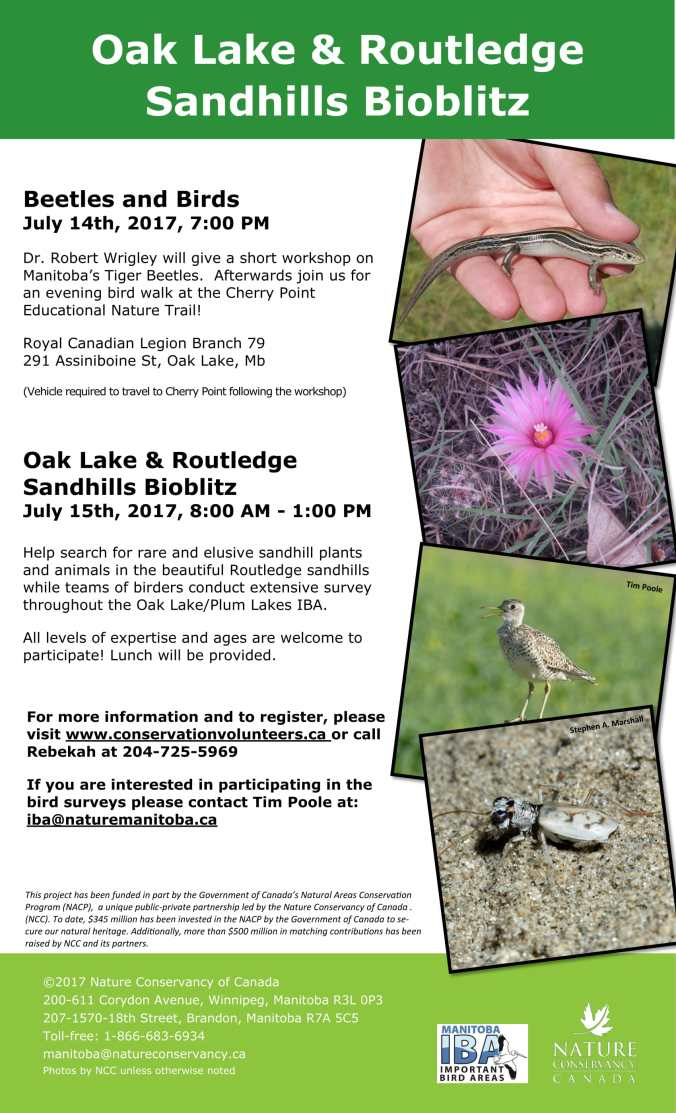 Oak Lake Bioblitz FFA (1)-1.jpg