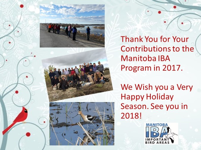 Seasons Greetings From the Manitoba IBA Program