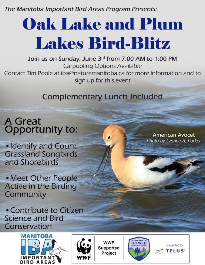 OakLake&PlumLakes_Bird-Blitz_EventPoster_2.jpg