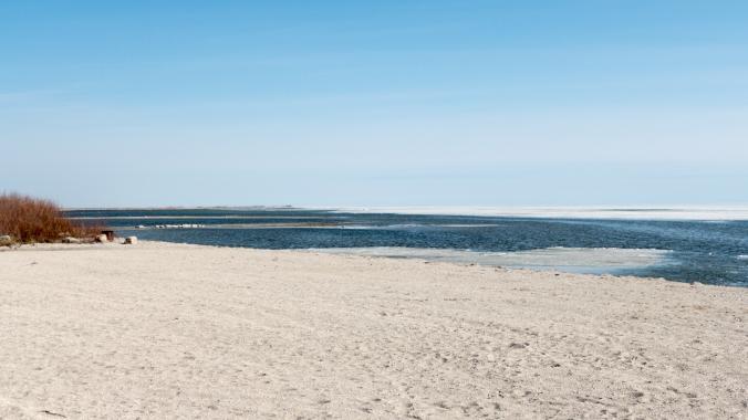 Sandy Bay IBA Blitz-Langruth-Manitoba-000-LARGE-Lynnea A Parker2-1080641