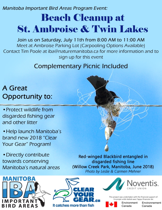 Event poster_Beach Cleanup Ambroise and Twin Lakes_1