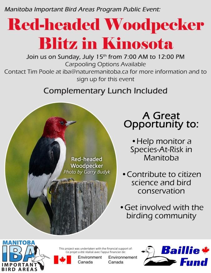 Event Poster_RHWO Blitz Kinosota_1 (1)