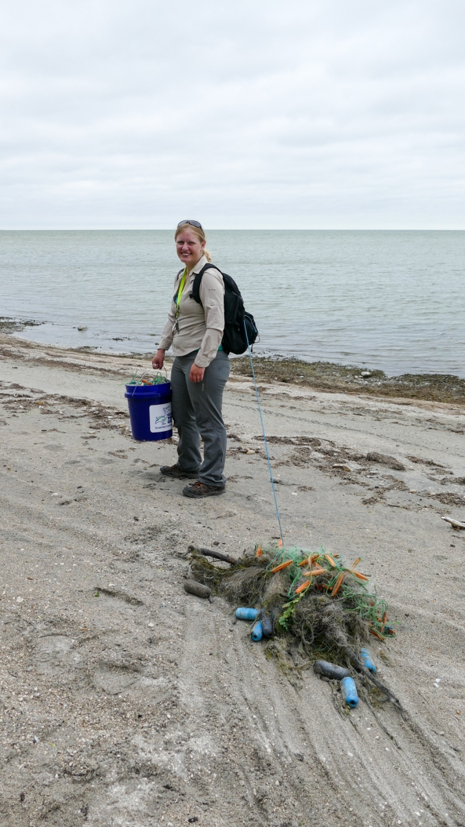 Shoreline cleanup-Lake Manitoba-MB-000-LARGE-CROP-SMALL-Lynnea A Parker-1110617