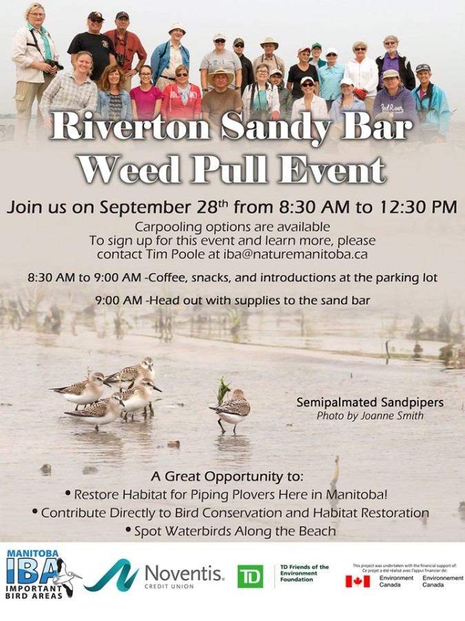 Riverton Weed Pull poster