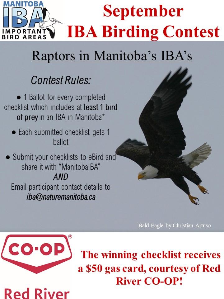 IBA birding contest September.jpg