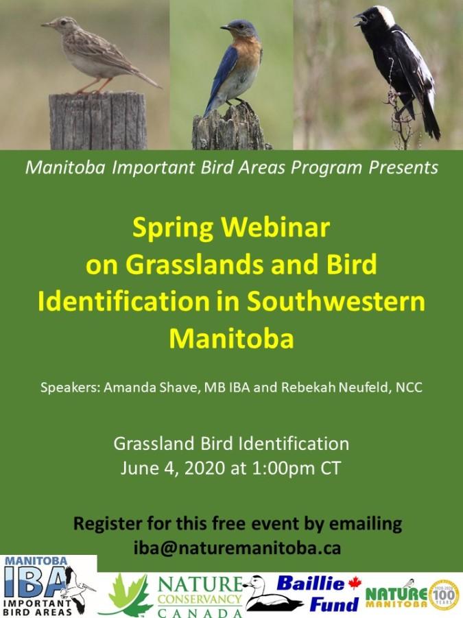 IBA Manitoba Grasslands Poster