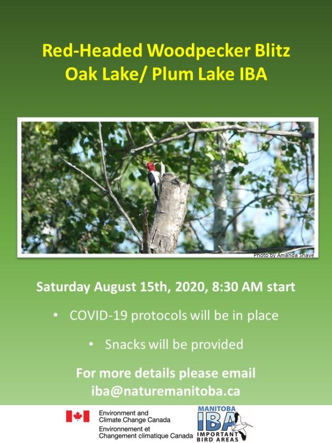 Oak Lakes RHWO Blitz Poster